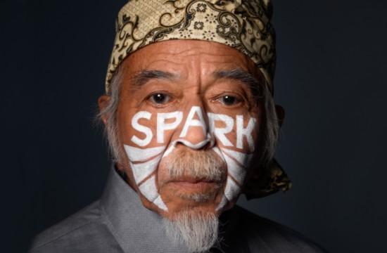 banner-hivosNL-spark