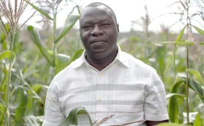 Seed Savers Network maakt toegang tot zaden laagdrempelig