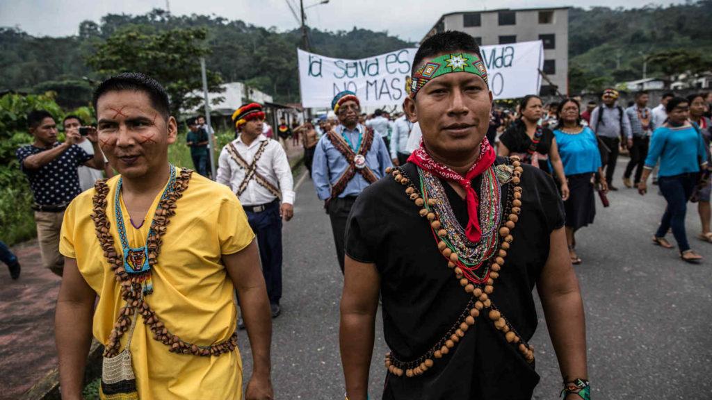Hernan vecht voor behoud Amazone