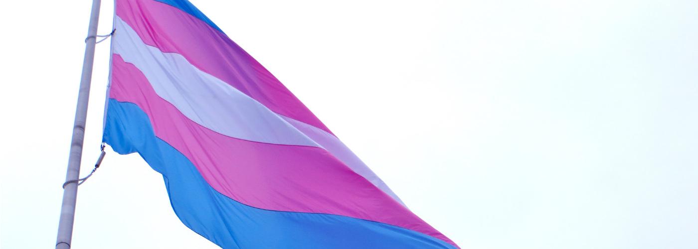 Trans gender pride vlag - Hivos